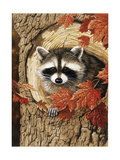 Raccoon Giclee Print by William Vanderdasson