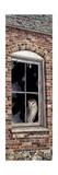 The Look Out Impression giclée par Jeff Tift