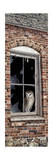 The Look Out Giclee Print by Jeff Tift