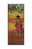 Toros Mexico Giclee Print