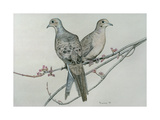 Two Birds on Branch Giclee Print by Rusty Frentner