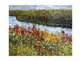 The River Giclee Print by Mandy Budan