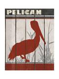 Pélican Impression giclée par Karen Williams