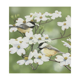 Springtime and Chickadees Giclee Print by William Vanderdasson