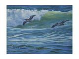 Pelican Skimmers Giclee Print by Bruce Dumas