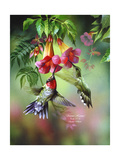 Summer Hummer Impression giclée par Spencer Williams