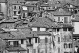 San Giminiano Texture Photographic Print by Moises Levy