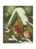 Snowy Birdhouse Giclee Print by William Vanderdasson