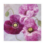 Purple Poppies I Giclee Print by li bo