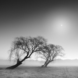 Reverencia Lámina fotográfica por Moises Levy