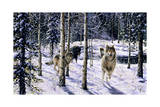 Pursuit Giclee Print by Jeff Tift