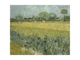 Van Gogh, View of Arles with Irises Giclee Print