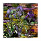Sunset Irises Giclee Print by Mindy Sommers