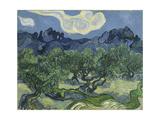 Van Gogh, Olive Trees Giclée-tryk