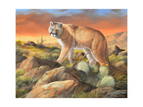 Sonoran King Giclee Print by Trevor V. Swanson