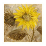 Sunflower III Giclee Print by li bo