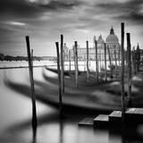 Venice Santa Maria della Salute Photographic Print by Nina Papiorek