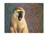 Yawn Giclee Print by James W. Johnson