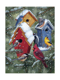 Winter Birdhouses Giclee Print by William Vanderdasson