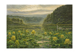 Westerly Pond Giclee Print by Bruce Dumas