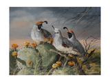 Stormy Spring Giclee Print by Trevor V. Swanson
