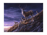 Threatening Sky Red Deer Giclee Print by Jeremy Paul