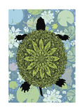 Turtle Giclee Print by Teofilo Olivieri