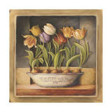 Tulip Classic Bulb Giclee Print by Lisa Audit