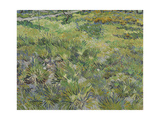 Van Gogh, Long Grass with Butterflies Giclee Print