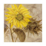 Sunflower I Giclee Print by li bo