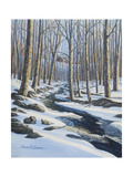 Woodland Farm Stream Giclee Print by Bruce Dumas