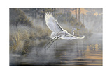 Sunrise Flight Giclee Print by Wilhelm Goebel