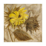 Sunflower IV Giclee Print by li bo