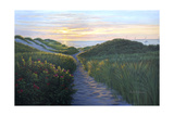 Through the Dunes Giclee Print by Bruce Dumas