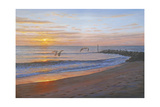 Wings over Captiva Giclee Print by Bruce Dumas