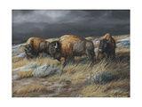 Storm Remnants Giclee Print by Trevor V. Swanson