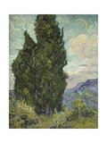 Van Gogh, Cypresses Giclee Print