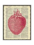 Strawberry Giclee Print by Erin Clark