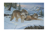 Vantage Point Wolves Giclee Print by Bruce Dumas