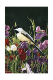 Sweet Peas and Chickadee Giclee Print by William Vanderdasson