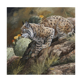 Wildlife Giclee Print by Wildlife Wildlife