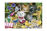 Bathtime Kittens Giclee Print by Jenny Newland