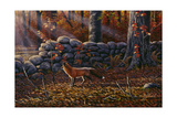 Autumn Reds - Red Fox Giclee Print by Wilhelm Goebel
