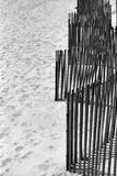 Beach Fencing 2 Photographic Print by Jeff Pica