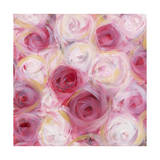White and Pink Roses Giclee Print by li bo