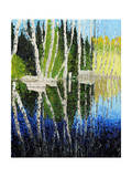 Birch Tree Reflections Reproduction procédé giclée par Kevin Dodds