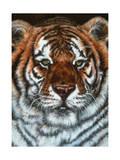 Awesome Beauty Giclee Print by Jenny Newland