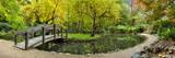 Wayne Bradbury - Alfred Nicholas Gardens Fotografická reprodukce