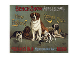 Bench Show, New England Kennel Club Giclee Print