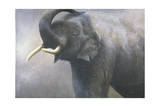 Asian Elephant Dusting Giclee Print by Jeremy Paul